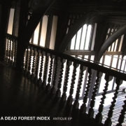 Review: A Dead Forest Index - Antique